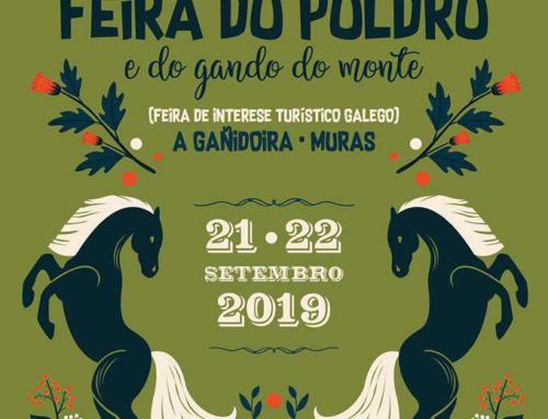 FEIRA DO POLDRO (MURAS)